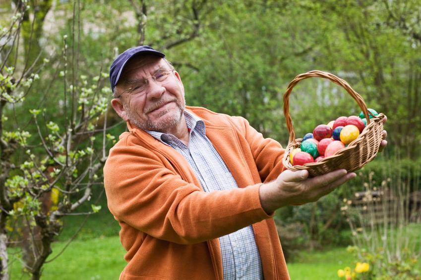 Demenziell Veränderte suchen ihre eigenen versteckten Eier